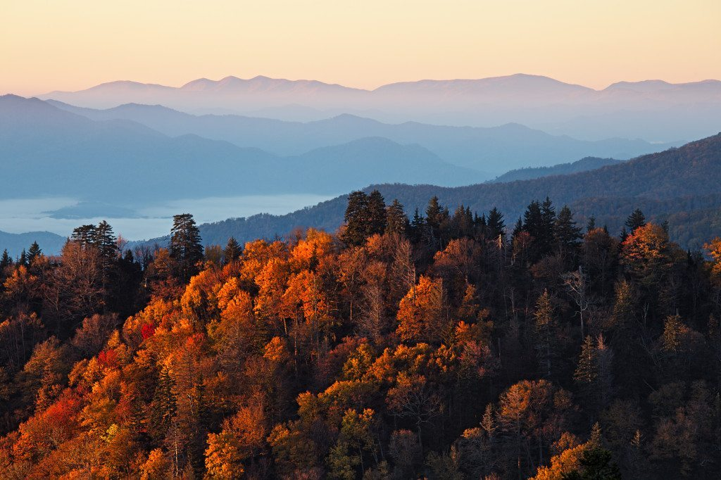 Chicago to Great Smoky Mountains National Park |Road trip |Ghoomnaphirna