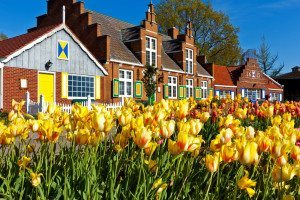 Holland, MI road trip for Tulip Festival | Ghoomna Phirna
